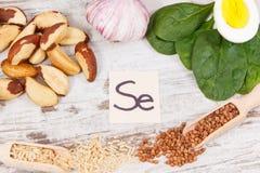 成份或产品当来源硒、维生素、矿物和饮食纤维 免版税库存图片