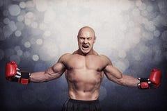 成功的拳击手的综合图象有被伸出的胳膊的 库存图片
