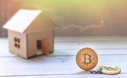 成功的bitcoin贸易商概念 免版税库存照片