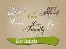 成套设计eco产品的书法 免版税库存图片