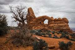 成拱形国家公园 库存图片
