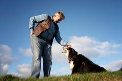 成熟人和护羊狗 库存照片