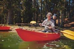 成熟人坐日志在湖附近 库存图片