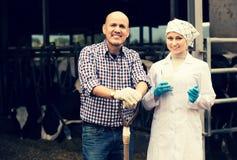 成熟兽医聊天与农夫 免版税库存图片