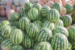 成熟南瓜和西瓜在农夫市场上在乔治亚 农业南瓜和西瓜 免版税库存图片