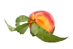 成熟叶子的桃子 免版税库存图片