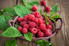 成熟叶子的莓 免版税图库摄影