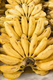 成熟和可口香蕉待售 库存照片