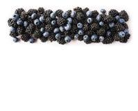 成熟在白色背景隔绝的黑莓和蓝莓 在白色的黑和蓝色莓果 在图象边界的莓果与 免版税库存照片