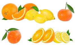 成熟在白色隔绝的桔子和柠檬 免版税库存图片
