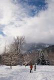 成熟夫妇滑雪 免版税库存照片