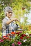 成熟妇女浇灌的花 免版税库存图片