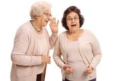 成熟妇女耳语对她惊奇的朋友 免版税库存图片