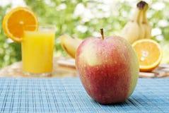 成熟开胃的新鲜水果 免版税库存照片