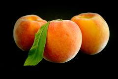 成熟新鲜的桃子 图库摄影