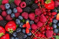 成熟新鲜的莓果 免版税库存照片