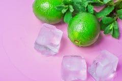 成熟有机在轻的紫红色的桃红色背景的石灰新鲜的薄荷熔化冰块与水下落 Mojito鸡尾酒成份 免版税图库摄影