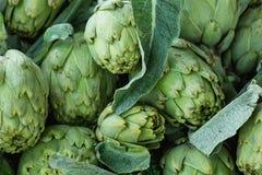 成熟有机新近地被采摘的朝鲜蓟堆与绿色叶子的在农夫市场上 充满活力明亮的颜色 维生素Superfoods 免版税库存图片