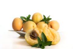 成熟杏子用在白色背景隔绝的薄菏 新鲜水果 夏天 免版税库存照片