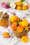 成熟杏子的篮子 免版税库存照片