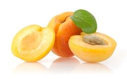 成熟杏子 免版税库存照片