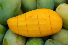 成熟果子的芒果 库存图片