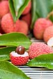 成熟果子的lychee 库存图片
