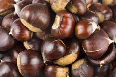 成熟栗子关闭  原始的chestnuts.a关闭射击 免版税库存图片