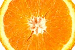 成熟桔子的宏观图象 接近的桔子 免版税图库摄影