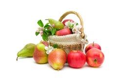 成熟梨和苹果在白色背景 免版税库存照片