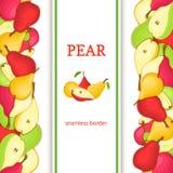 成熟梨垂直的无缝的边界 导航例证卡片用整个构成水多的梨果子和切片,开胃的叶子 图库摄影