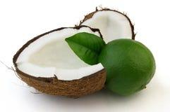 成熟椰子的石灰 库存照片