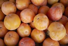 成熟橙色亚洲柿树 库存照片