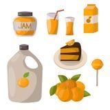 成熟橙色产品结果实柑橘切片甜食物现实有机传染媒介例证 免版税库存图片