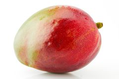 成熟水多和开胃芒果果子用水投下特写镜头 免版税库存照片