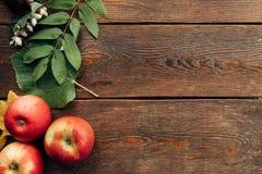 成熟水多的木表面上的秋天和叶子 免版税库存图片