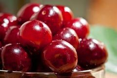 成熟水多的樱桃射击了与汁液下落的特写镜头莓果表面上的  库存图片