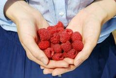 成熟水多的莓在女性手上 库存图片