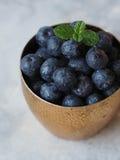 成熟湿蓝莓和薄菏小树枝在一块金黄玻璃的 免版税库存照片