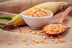 成熟玉米五谷在碗和匙子的用新鲜的甜玉米 库存照片
