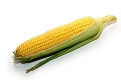 成熟玉米果子在桌上 免版税库存图片
