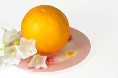 成熟瓜和白色精美花 免版税库存照片