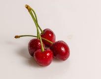 成熟甜樱桃 库存图片