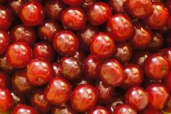 成熟甜水多的樱桃浆果 免版税库存照片