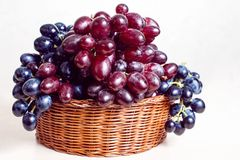 成熟甜葡萄的分类在篮子的,隔绝在白色 库存照片