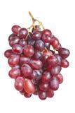 成熟的束,新鲜的红葡萄 免版税库存图片