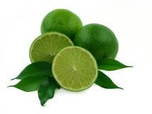 成熟的柠檬 免版税库存图片