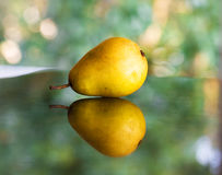 成熟的梨 免版税图库摄影