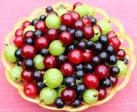 成熟的浆果 免版税库存图片