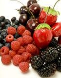 成熟的浆果 库存图片